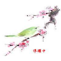http://qpon-toyota.com/maplink/nenga1.jpg