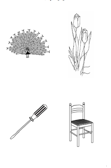 認知 機能 検査 イラスト パターン